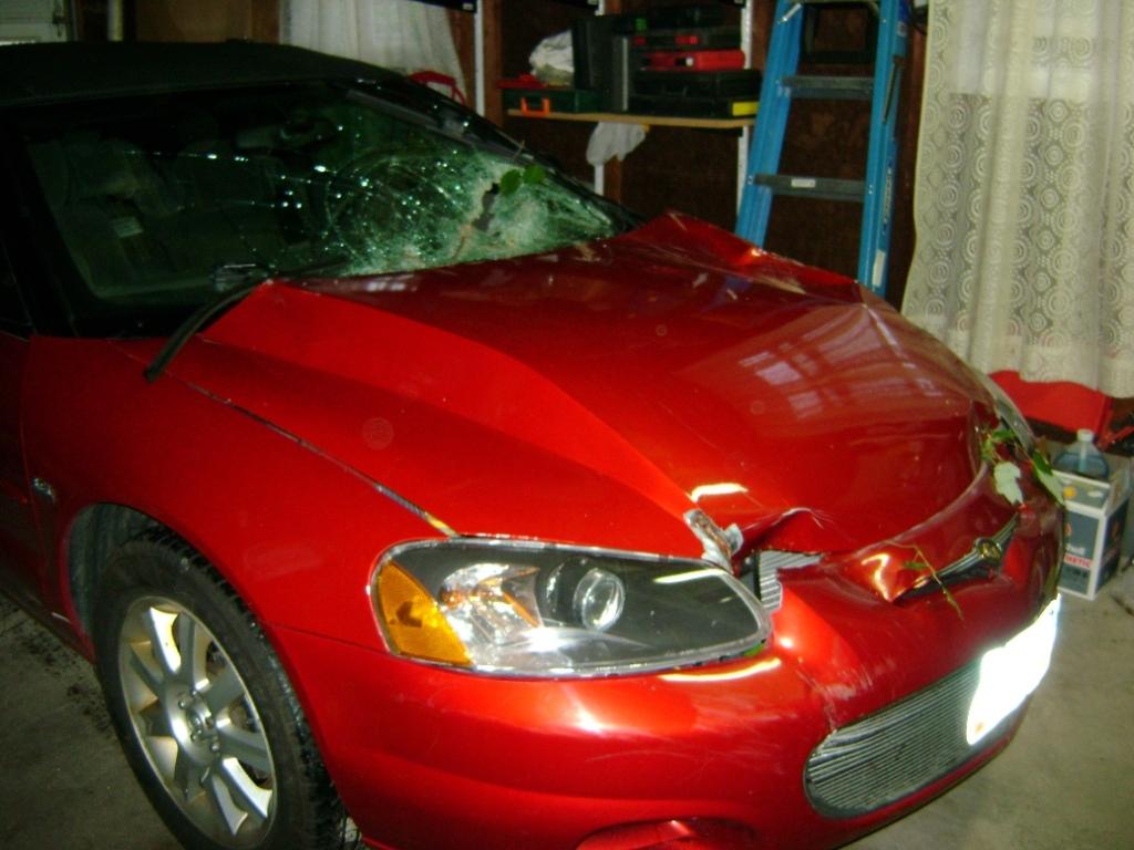 Front End/Hood Damage